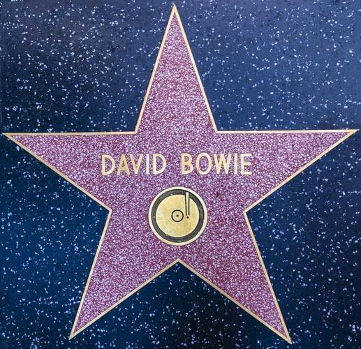 David Bowie Star (002)