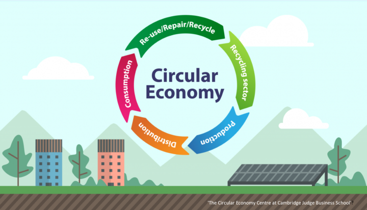 Five phase Circular Economy graphic from Cambridge Judge Business School