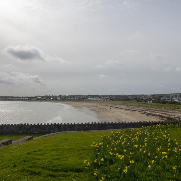 Skerries Beach 4