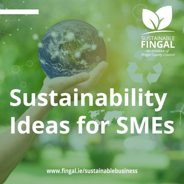 Sustainable Fingal campaign graphic